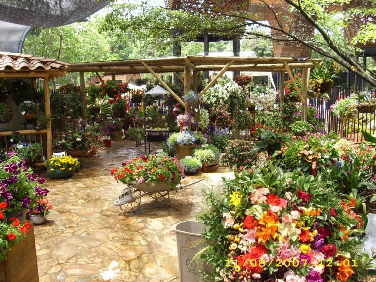 Jardineria bricolaje casa for Centro de jardineria