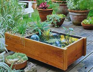 plantar en jardines pequeños
