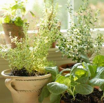 Ideas para jardin bricolaje casa for Bricolaje para jardin