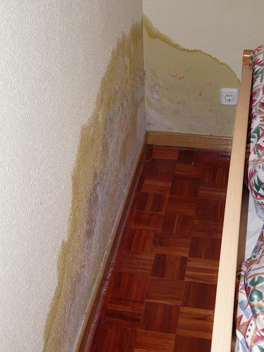Humedad en paredes bricolaje casa - Humedad en casa ...