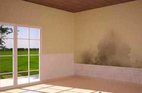Humedad bricolaje casa - Como evitar la humedad en casa ...
