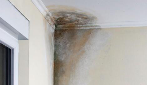Como combatir la humedad en la casa
