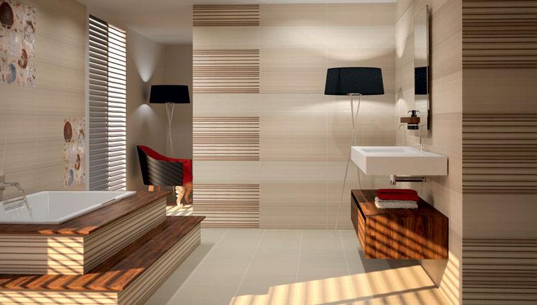 Diseno De Baño Para Casa:Disenos De Banos Con Tile